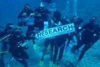 Il progetto di tutela degli squali alle Fiji compie un anno