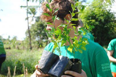 volontario-piante