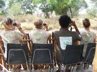 Birdlife Botswana pubblica il rapporto annuale