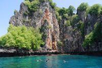 I volontari preservano la vita marina delle coste Thailandesi