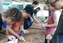 Volunteers Thailand