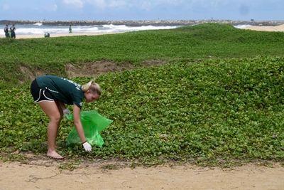 プロジェクトアブロードの女性ボランティアが海岸の清掃活動を行っています