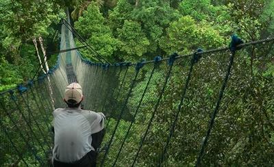 ペルー環境保護プロジェクト 鳥を観察するボランティア