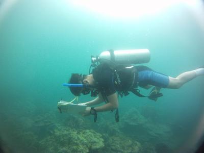 カンボジアで海外ボランティア活動 Coral Watchデータベースに提供する海洋データを収集する高校生ボランティア