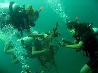 Teamwork underwater