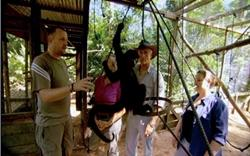 Stuart shows Jack the spider monkey enclosure