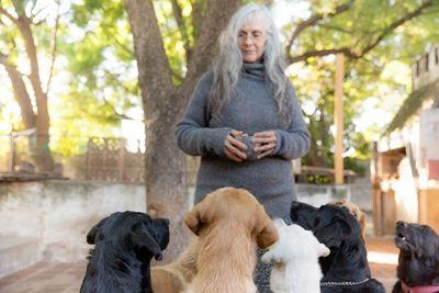 Mariana Ferrero, owner and primary therapist at Fundación Jingles in Córdoba, Argentina works with the therapy dogs.