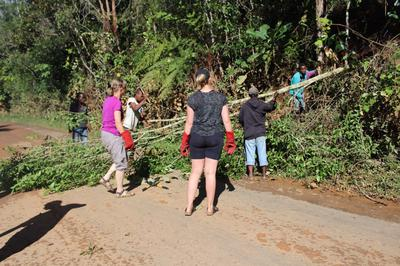 Volunteers clear roads after Cyclone Enawo