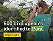 Milestone bird count on Rainforest Conservation Project