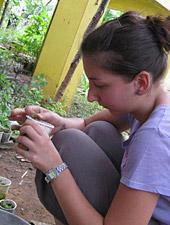 Campi di volontariato per l'estate 2011 - Newsletter n. 1