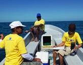 Freiwillige sammeln Daten