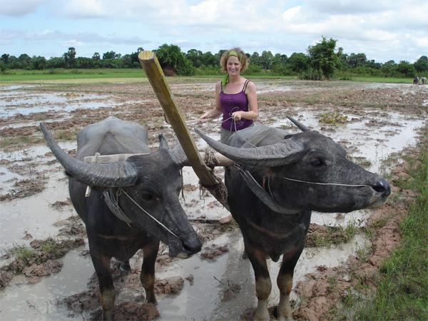 Auf dem Dorf im Khmer - Projekt