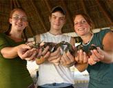 Freiwillige mit Schildkröten