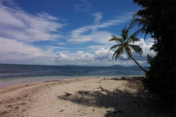 Pragtfuld strand i Costa Rica