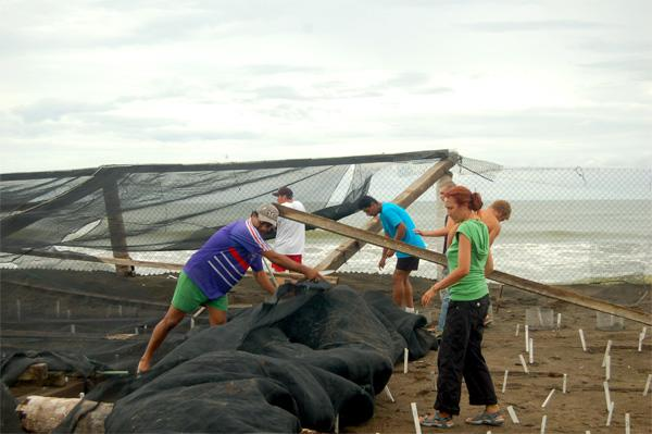 Frivillige på skildpaddecentret i Mexico