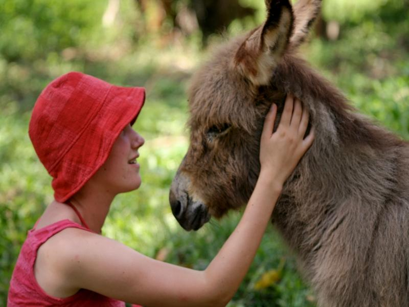 Volunteer with donkey at model farm in Peru