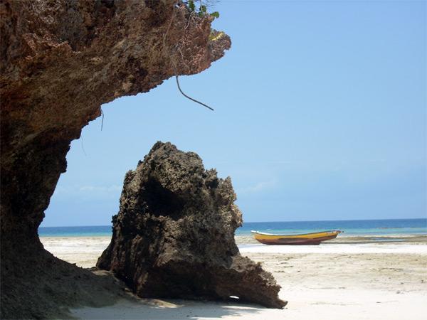 Tanzaniansk natur