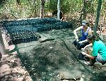 Conservation volunteers working