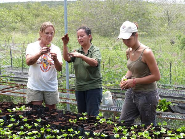 Volunteers on Conservation project
