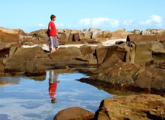 Natural pool reflect