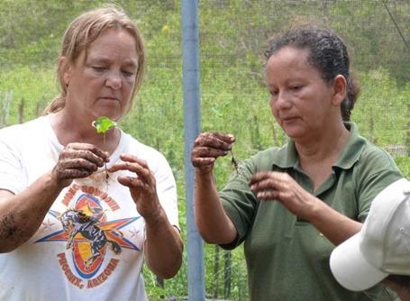 Écovolontariat en Équateur
