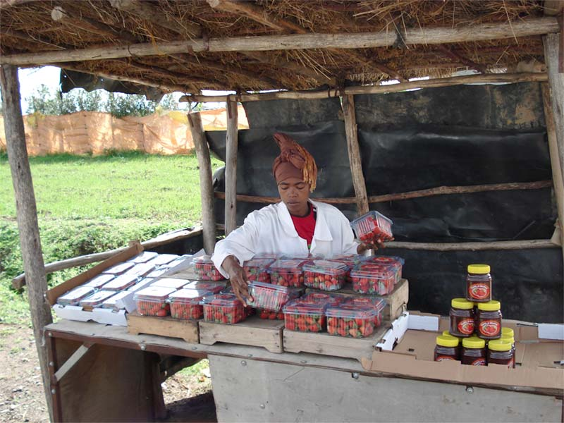 Vendeur de rue en Éthiopie