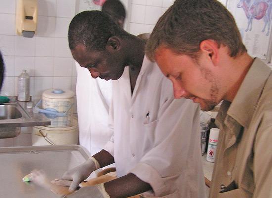 Veterinary lab