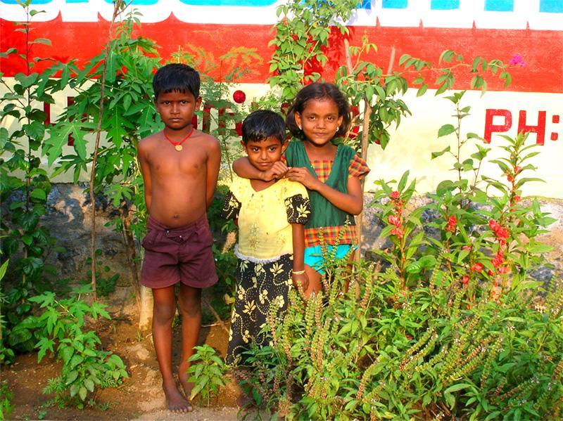 Des enfants dans le Tamil Nadu, en Inde