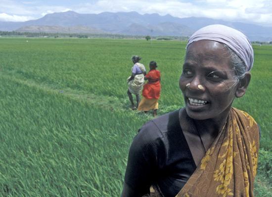 India women in field