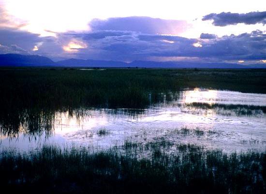 Lake from Mongolia