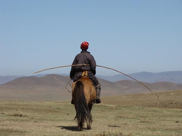Nomade sur un chameau en Mongolie