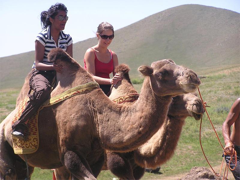 Volontaires sur des chameaux lors d'un voyage de fin de semaine