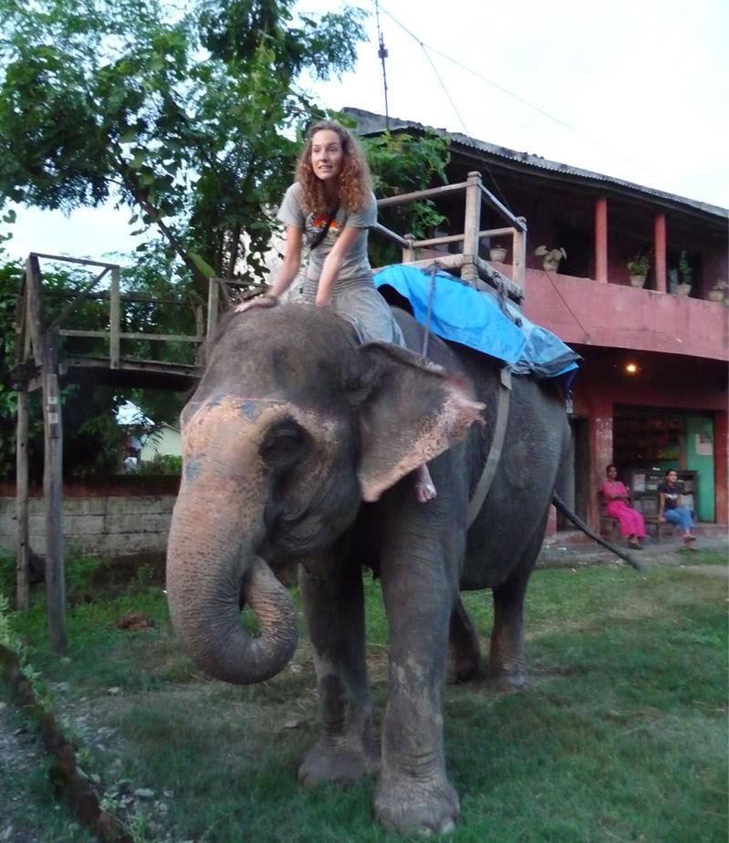 Découverte culturelle, une volontaire sur un éléphant au Népal