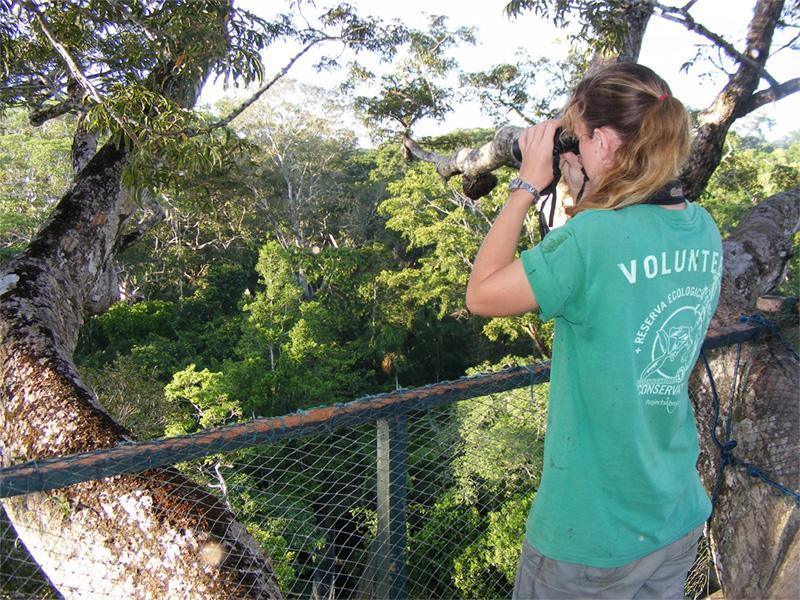 Observation d'oiseaux sur la mission d'écovolontariat au Pérou