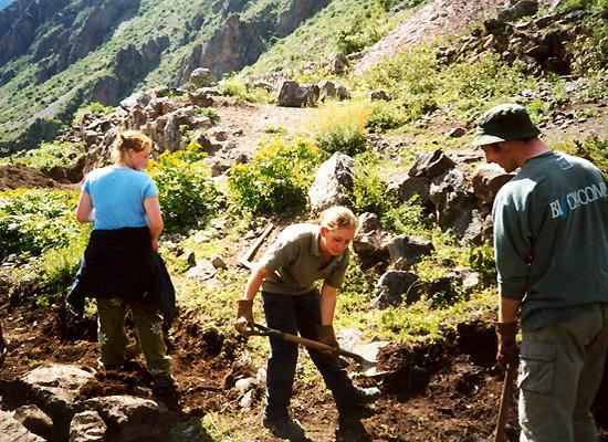 Volunteers digging