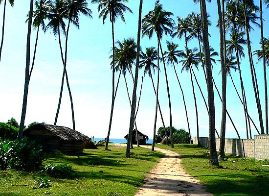 Rekawa beach site
