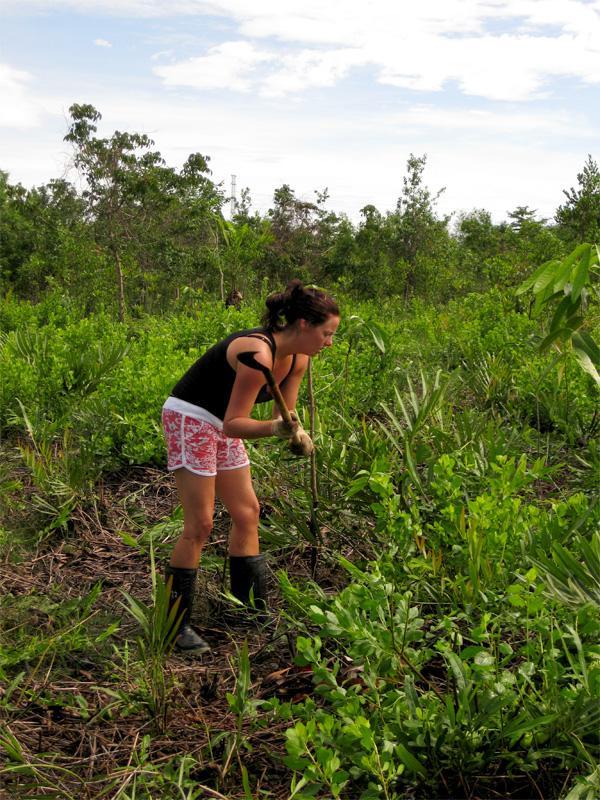Volontaire au travail sur une mission d'écovolontariat en Thaïlande