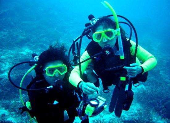 Reef Checking
