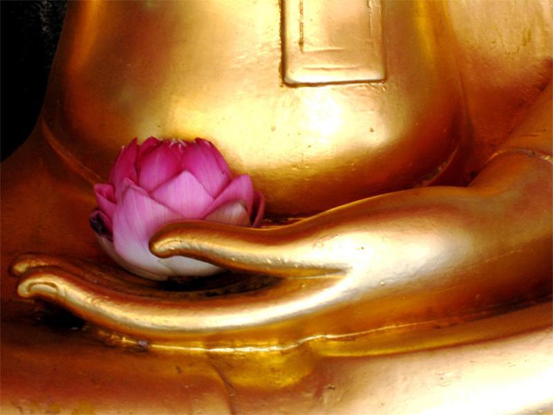 Statue de Buddha avec une fleur en Thaïlande
