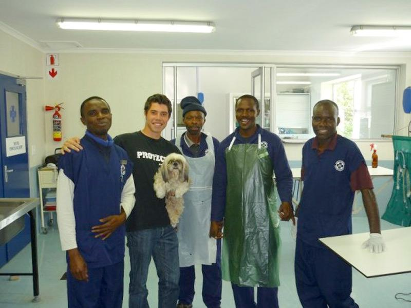 Stagiaire en soins animaliers