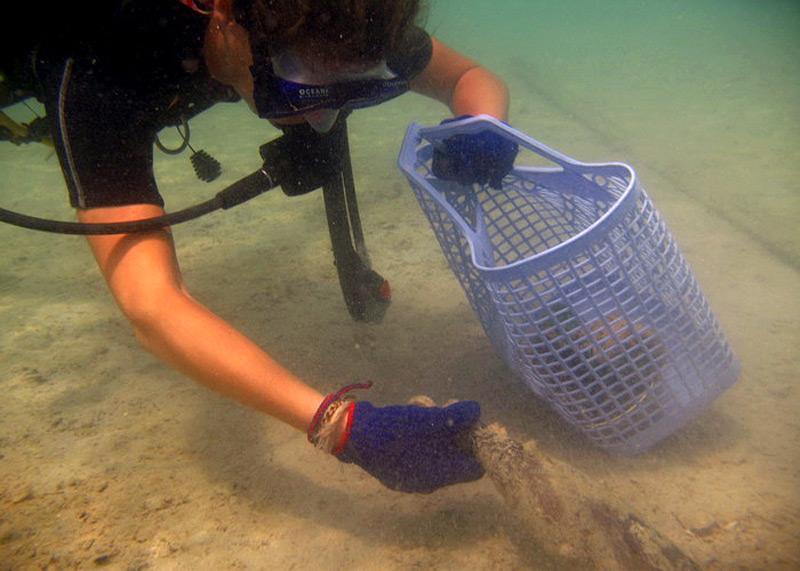 Action nettoyage du littoral