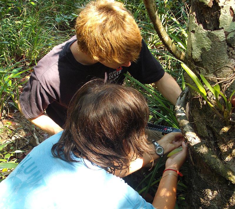 Projet étude forêt vierge équatoriale