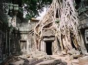 Vestiges d'un temple