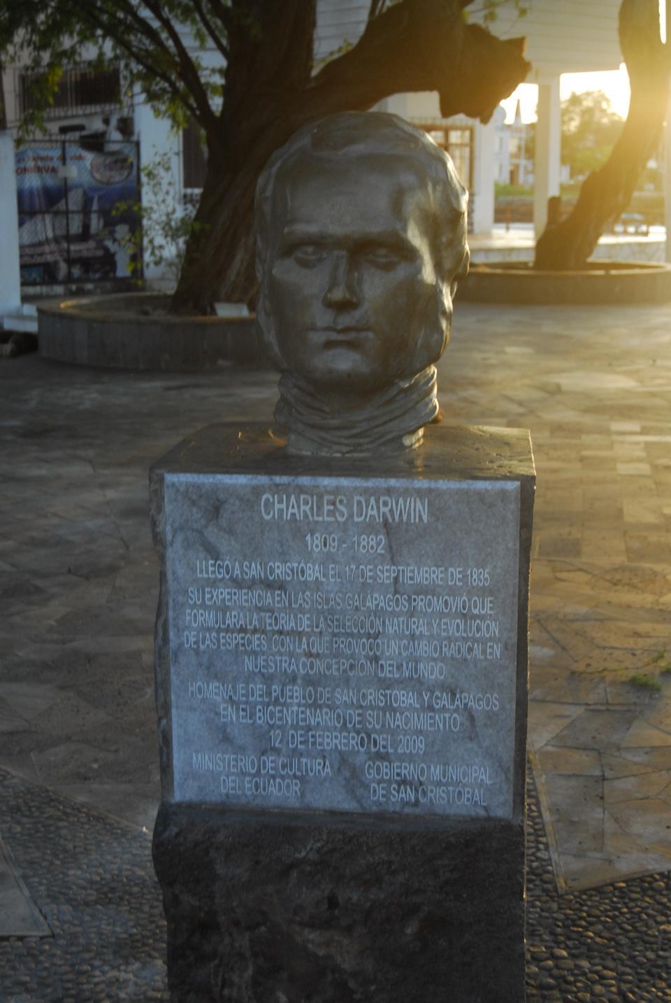 Statue de Darwin