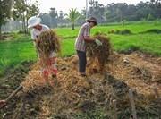 Activité production du vermi-compost