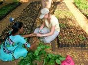 Activité promotion de l'agriculture biologique