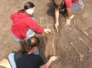 Activité récupération des os archéologie