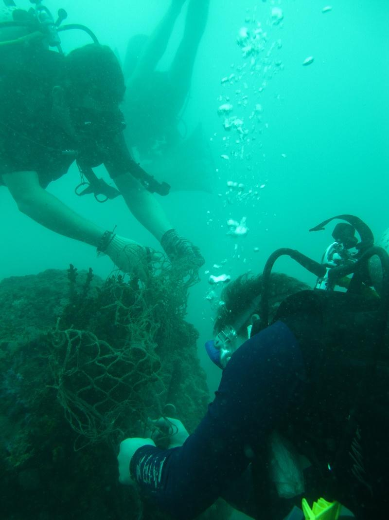 Assainissement des fonds marins