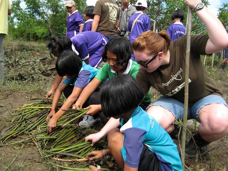 Journée éducative sur la reforestation
