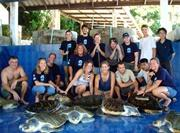 Aide dans un centre de soins pour animaux sauvages